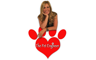 The Pet Engineer Blog